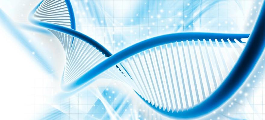 Top DNA Testing Firms