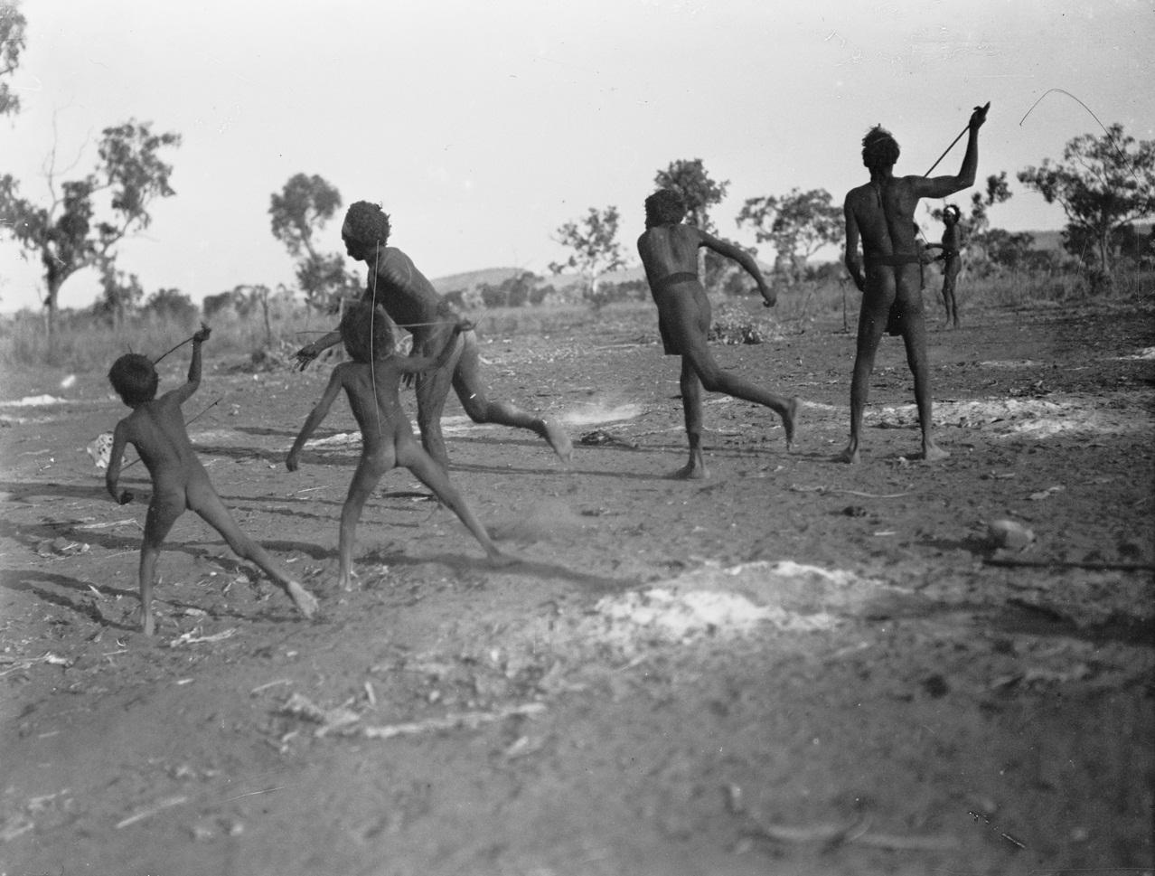 how to start a ostrich farmin australia
